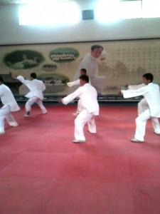 TAI CHI CHUAN : UN ART MARTIAL ET UNE PRATIQUE DE SANTE demo_wenxian-225x300
